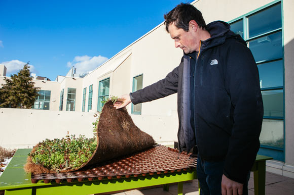 Greg Yuritsy showing green roofing product sample