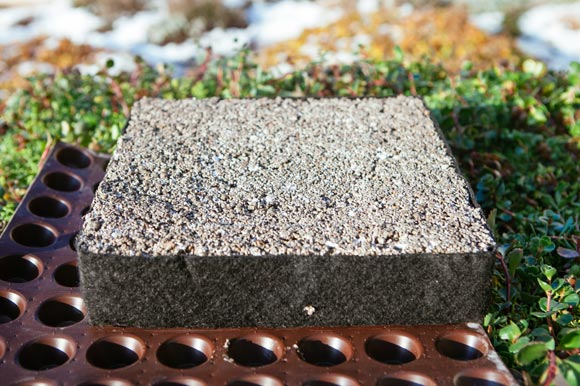 Green Roof substrate block